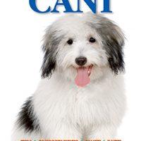 Cani e Gatti /Cats and Dogs